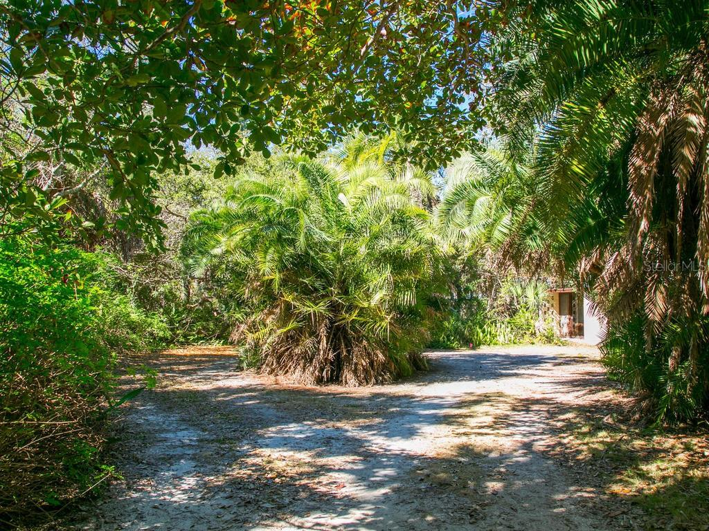 Walking toward Farley residence, there is an Ocala block wall here and also a taller one along South side of the property. Designed by Ralph Twitchell and Jack West (1953-1956) - Single Family Home for sale at 1100 Sunset Dr, Venice, FL 34285 - MLS Number is A4426298