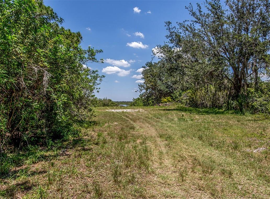 Clearing to Myakka River - Vacant Land for sale at 9500 Myakka Dr, Venice, FL 34293 - MLS Number is N6111090
