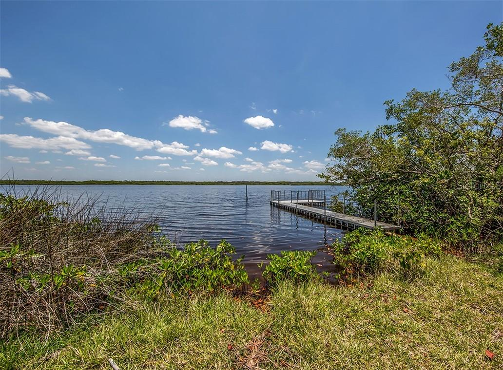 View of Myakka River from property - Vacant Land for sale at 9500 Myakka Dr, Venice, FL 34293 - MLS Number is N6111090